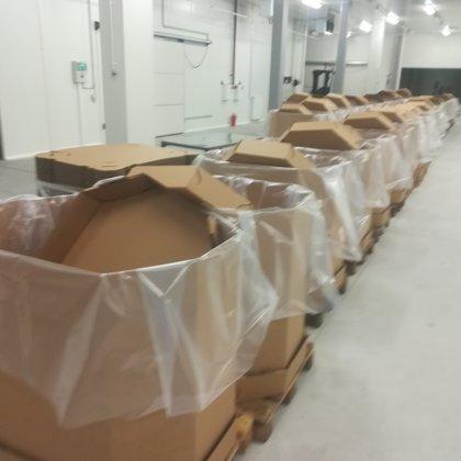 Ogu konteineri sagatavoti saldēto upeņu uzglabāšanai